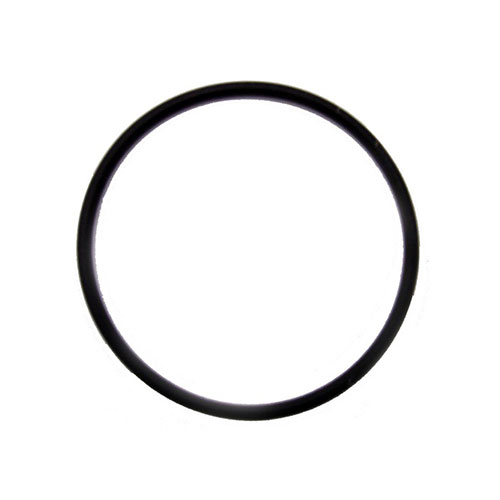 2 inch Diameter O-ring Gasket (for use on a keg)