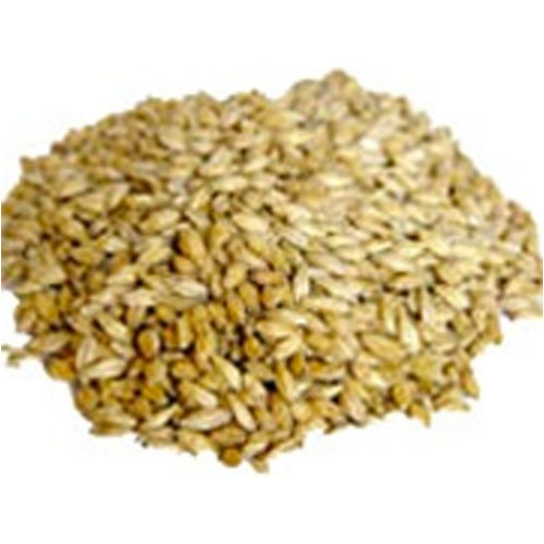 2-Row Pale Malt- Bulk