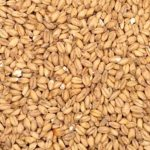 Gin Mash Ingredient Wheat