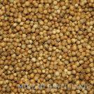 Coriander Seed Distilling Supplies