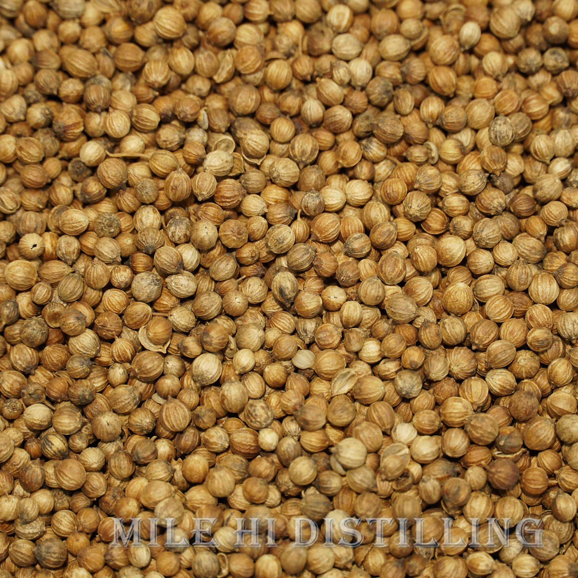 Coriander Seed Distilling Supplies