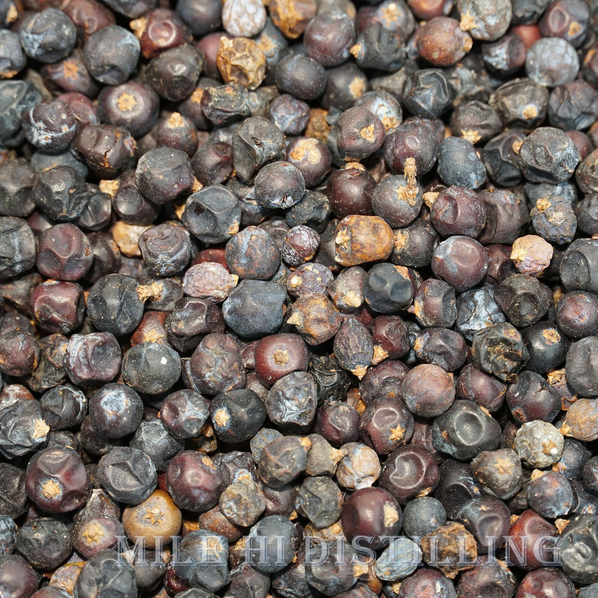 Juniper Berries Distilling Supplies