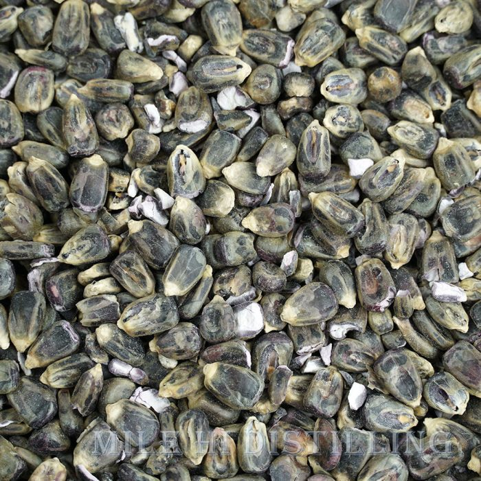 Malted Blue Corn